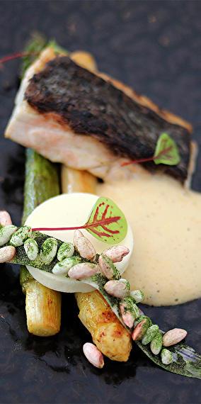 Gastronomic cuisine