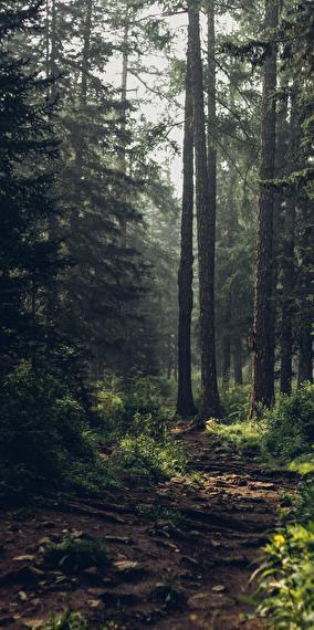 Ahhh la nature