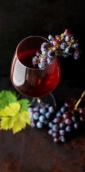 Wines to taste or take away!