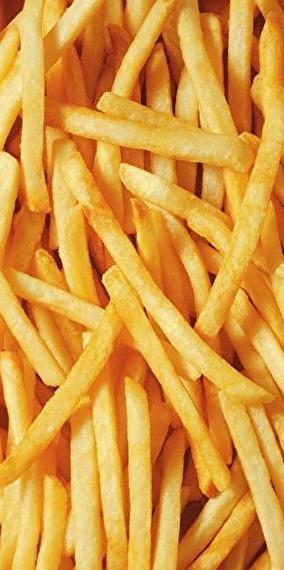 Luxury french fries