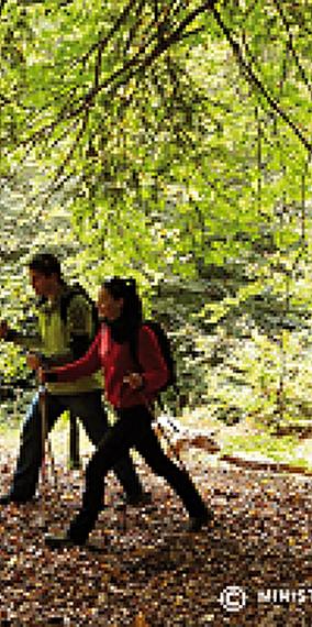Hiking tour from Troisvierges to Mersch – Offer by CFL Evasion