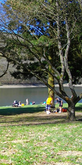 Park and picnic near the lake