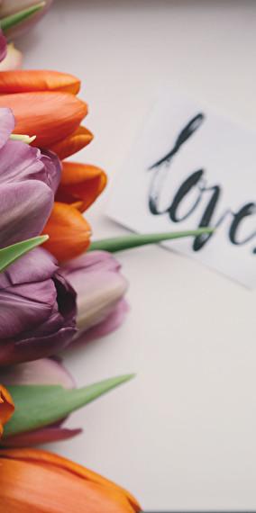 La plus fine des fleurs
