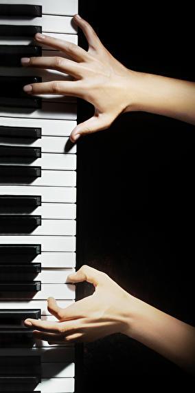 Concert : Shannon Wright (piano solo)