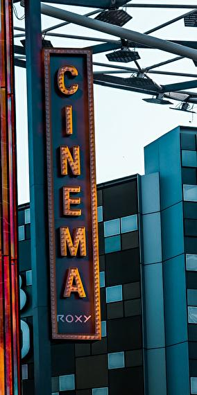 Have You Seen My Movie ? (Why We Love cinema)