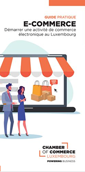 Discover the Practical guide to E-commerce