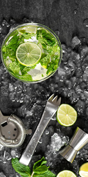 Gin Tonic Party